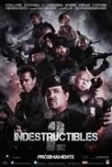 pelicula Los Indestructibles 2,Los Indestructibles 2 online