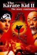 pelicula Karate Kid 2,Karate Kid 2 online