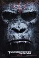 El Planeta de los Simios: Confrontacion online, pelicula El Planeta de los Simios: Confrontacion