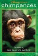 pelicula Chimpances,Chimpances online