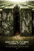 Maze Runner: Correr o Morir online, pelicula Maze Runner: Correr o Morir