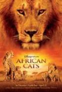 pelicula Felinos de Africa,Felinos de Africa online