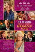 pelicula El Exotico Hotel Marigold 2,El Exotico Hotel Marigold 2 online