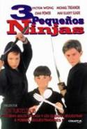 pelicula 3 Ninjas,3 Ninjas online