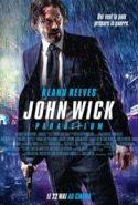 pelicula John Wick 3,John Wick 3 online